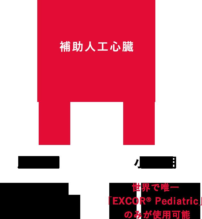 補助人工心臓